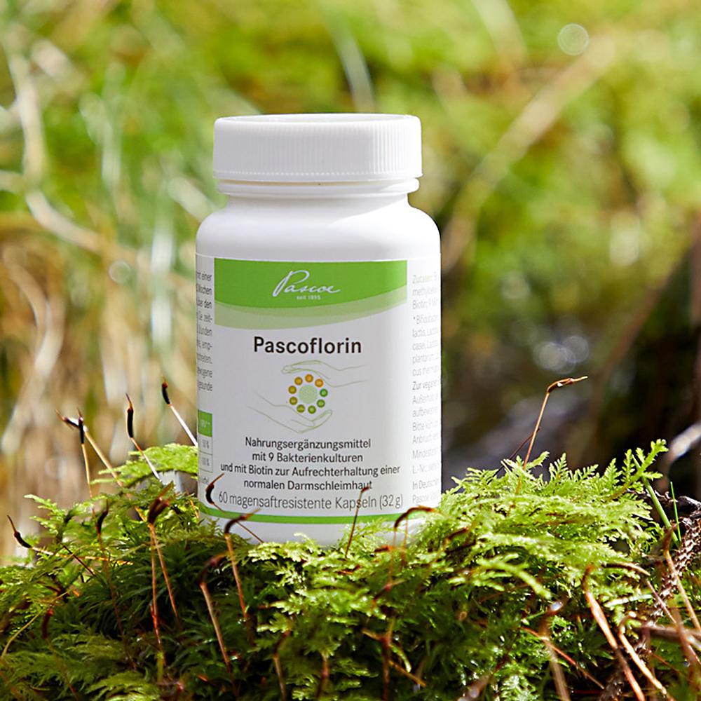 具有20种菌类的营养补品
